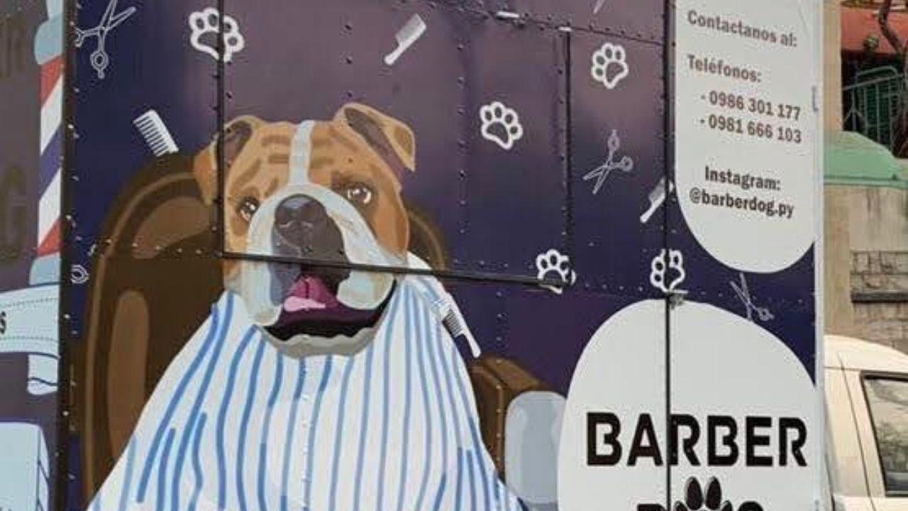 Peluquería para mascotas llega hasta tu barrio